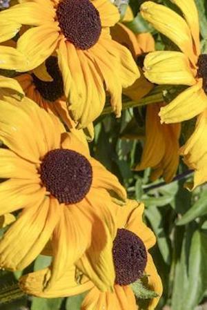 Bog, paperback Cone Flower Blooms, for the Love of Flowers af Unique Journal