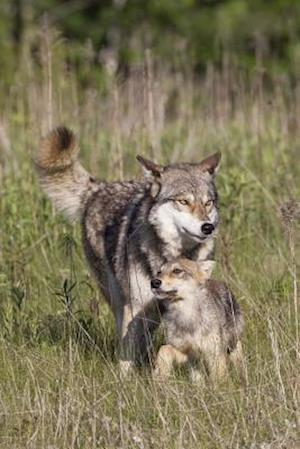 Bog, paperback Wolf with Cub in the Wild Journal af Cool Image