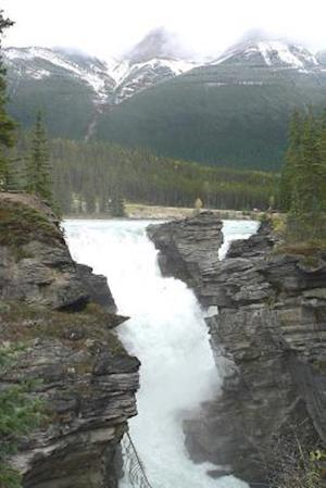 Bog, paperback Athabasca Falls in Jasper National Park, Alberta, Canada af Unique Journal