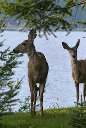 Bog, paperback A Pair of Deer by the Lake's Edge af Unique Journal