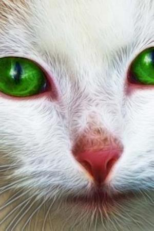 Bog, paperback A White Cat with Bright Green Eyes af Unique Journal