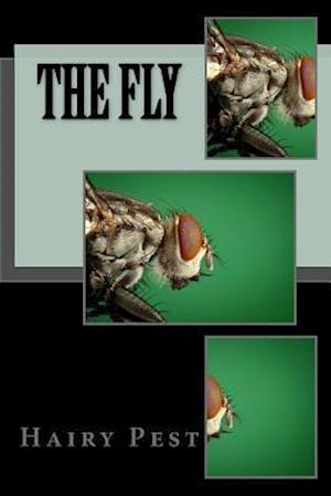 Bog, paperback The Fly af Hairy Pest