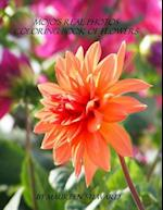 Mojo's Real Photos Coloring Book of Flowers af Maureen Steward