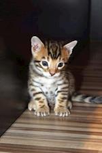 Bengal Kitten Cat Journal
