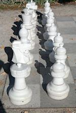 Chess in the Park Journal