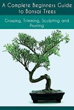 A Complete Beginners Guide to Bonsai Trees