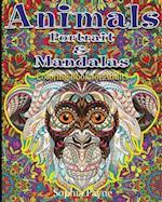 Animals Portrait & Mandalas