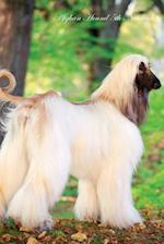 Afghan Hound 5th Notebook Record Journal, Diary, Special Memories, to Do List, Academic Notepad, and Much More af Breeds of Beauty