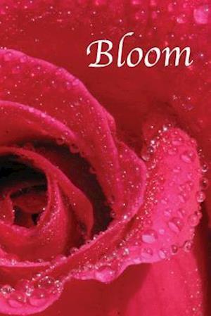 Bog, paperback Daily Planner af Michelle L. Whitney