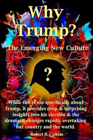 Bog, paperback Why Trump? af Robert B. Calkins