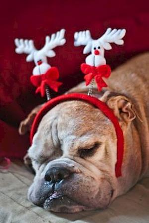 Bog, paperback Snoozing English Bulldog Wearing a Festive Reindeer Headband Holiday Journal af Cs Creations