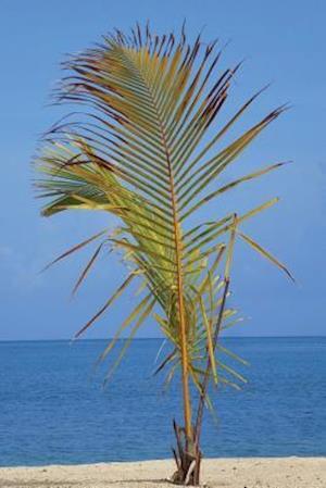Bog, paperback Roatan Island Honduras Journal af Cool Image