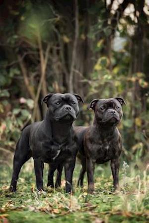 Bog, paperback Two Black Staffordshire Bull Terrier Dogs Journal af Cs Creations