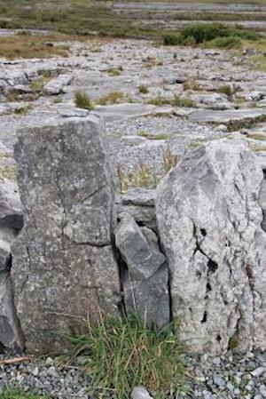 Bog, paperback The Burren Rocky Expanse in County Clare Ireland Journal af Cool Image