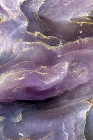 Bog, paperback Purple and Gold-Veined Charoite Mineral Close-Up Journal af Cs Creations