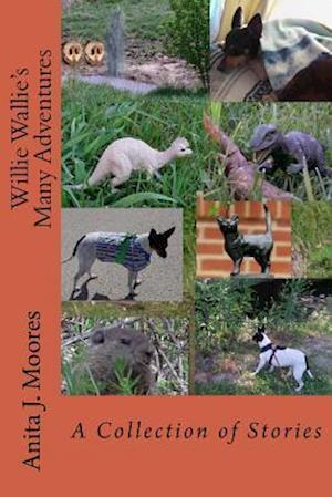 Bog, paperback Willie Wallie's Many Adventures af Anita J. Moores