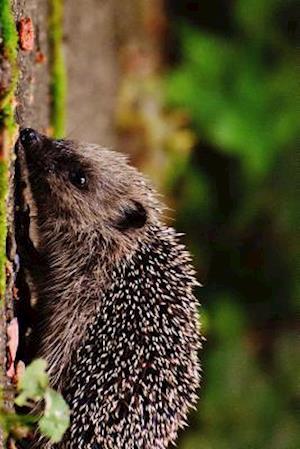 Bog, paperback Hedgehog Juvenile Looking for Food af Unique Journal