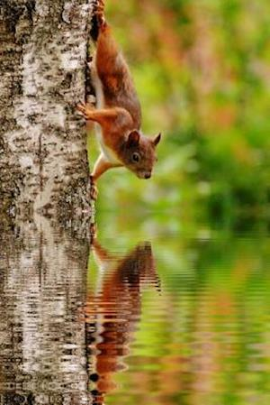 Bog, paperback Red Squirrel on a Tree by the Water af Unique Journal