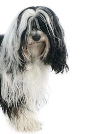Bog, paperback Tibetan Terrier af Artified Pets