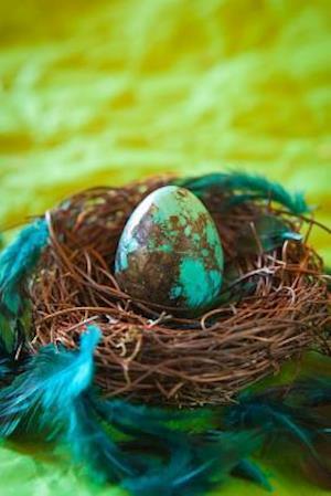 Bog, paperback A Turquoise Egg in a Rustic Nest Journal af Cs Creations