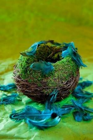 Bog, paperback An Empty Nest and Turquoise Feathers Journal af Cs Creations