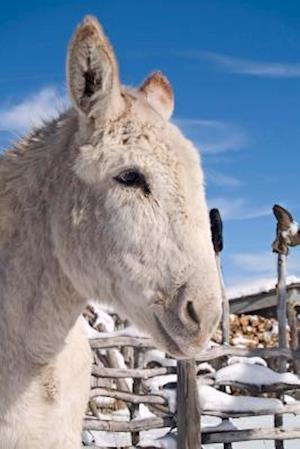 Bog, paperback Winter Donkey Portrait Journal af Cs Creations