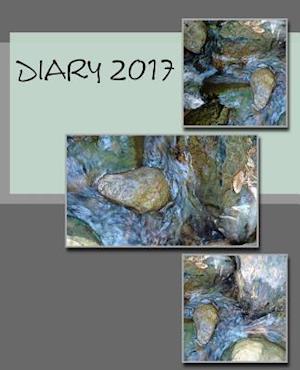 Bog, paperback Diary 2017 af Julia Kossowska