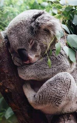 Bog, paperback Cute Koala Lined Notebook - 120 Page, 5x8, Lined Blank Book with a Cute Koala af S'Cute Press