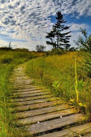 Bog, paperback Creeping Juniper Nature Trail Kohler Andrae State Park Wisconsin USA Journal af Cs Creations