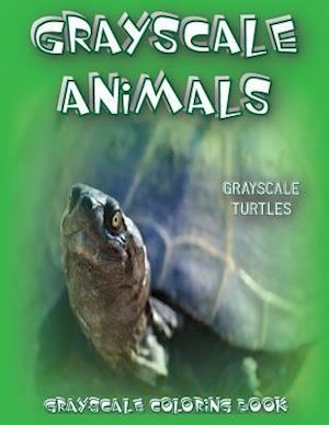 Bog, paperback Grayscale Animals Turtles af Grayscale Animals