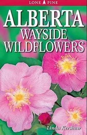 Bog, paperback Alberta Wayside Wildflowers af Linda Kershaw