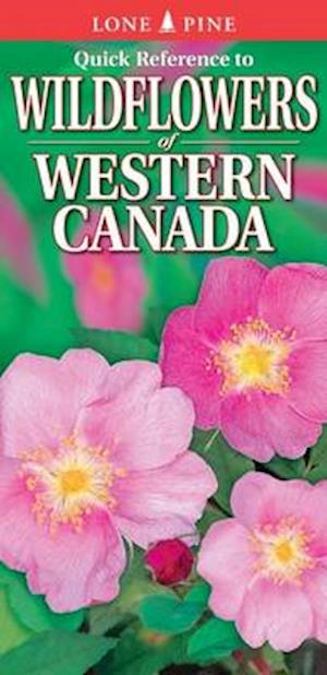 Quick Reference to Wildflowers of Western Canada af Krista Kagume