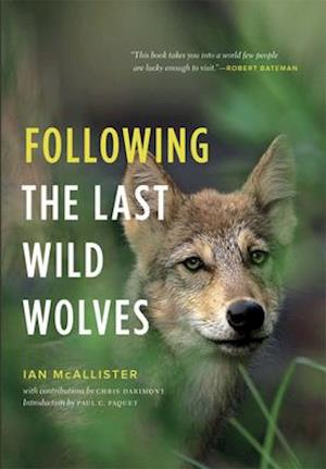 Following the Last Wild Wolves af Ian McAllister, Paul C Paquet