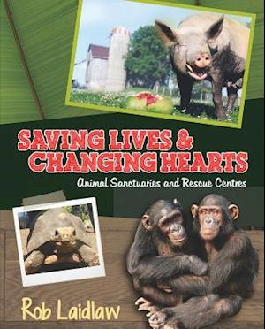 Saving Lives & Changing Hearts af Rob Laidlaw