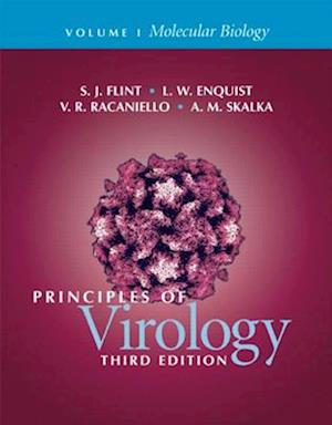 Principles of Virology 2 Volume Set af Vincent R. Racaniello, L. W. Enquist, S. Jane Flint
