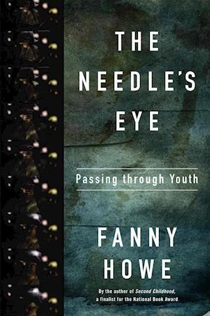 Bog, paperback The Needle's Eye af Fanny Howe