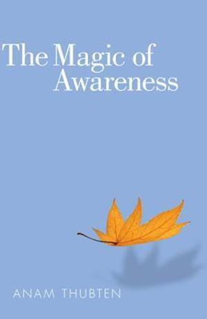 The Magic of Awareness af Anam Thubten