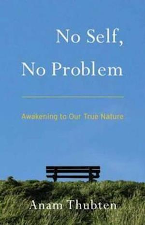 No Self, No Problem af Anam Thubten