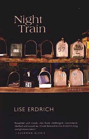 Bog, paperback Night Train af Lise Erdrich