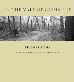 In the Vale of Cashmere af Thomas Roma