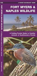 Fort Myers & Naples Wildlife (Pocket Naturalist guide)