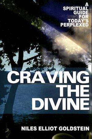 Craving the Divine af Rabbi Niles Elliot Goldstein