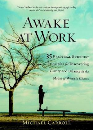 Awake at Work af Michael Carroll