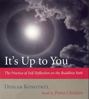 It's Up to You af Dzigar Kongtrul