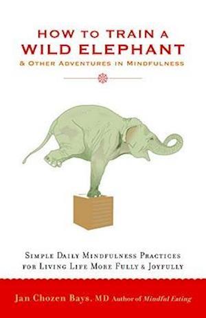 How to Train a Wild Elephant af Jan Chozen Bays