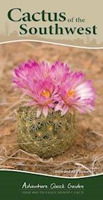 Cactus of the Southwest (Adventure Quick Guides)