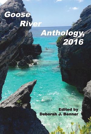 Bog, hardback Goose River Anthology, 2016