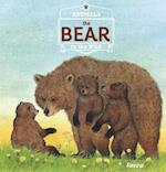 The Bear (Animals in the Wild)