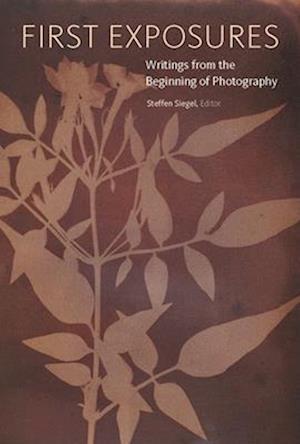 Bog, paperback First Exposures
