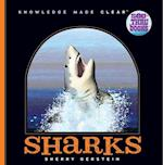 Sharks (See Thru Books)
